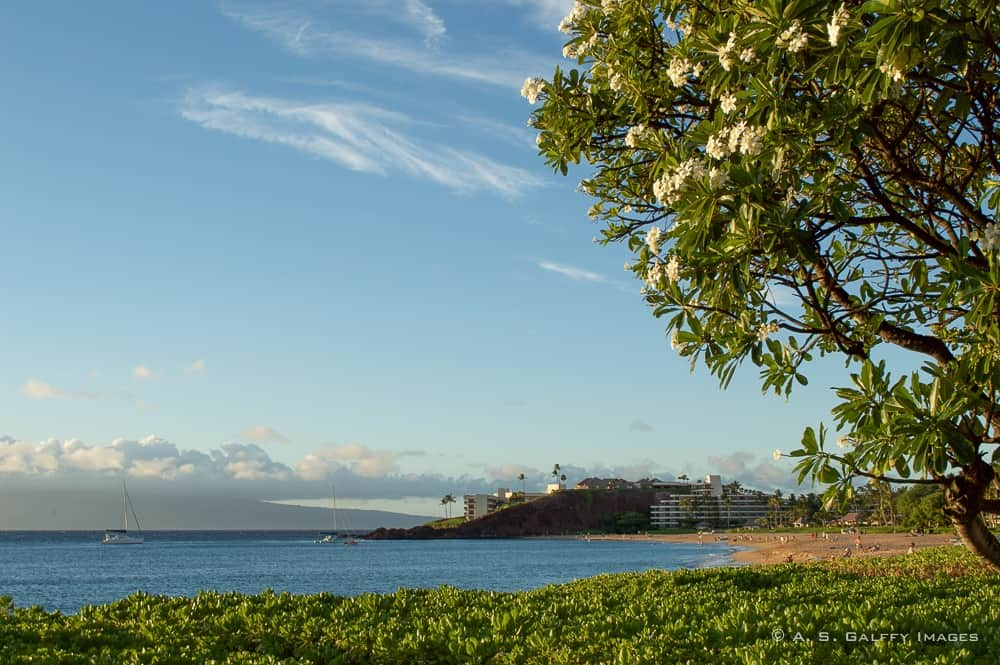 Top 10 Things to Do in Maui: What to See, Where to Eat, How to Have Fun