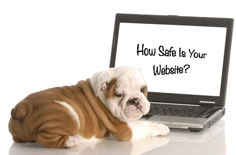How Safe Is Your Website?