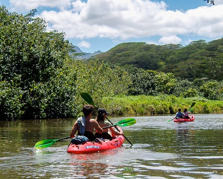 Best Kauai Activities to Keep Your Entire Family Entertained