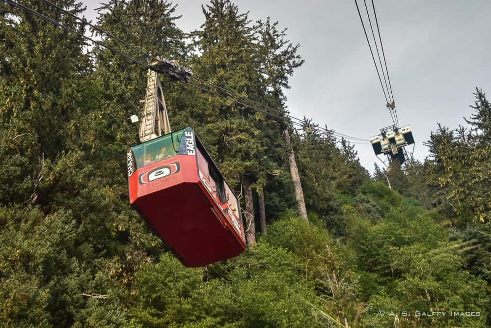 Tramway to the Top of Mount Roberts in Juneau