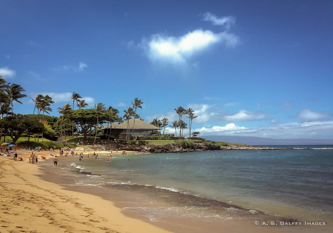 picture of Hawaii beach