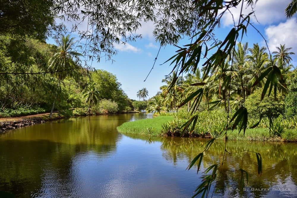Waimea River in Kauai