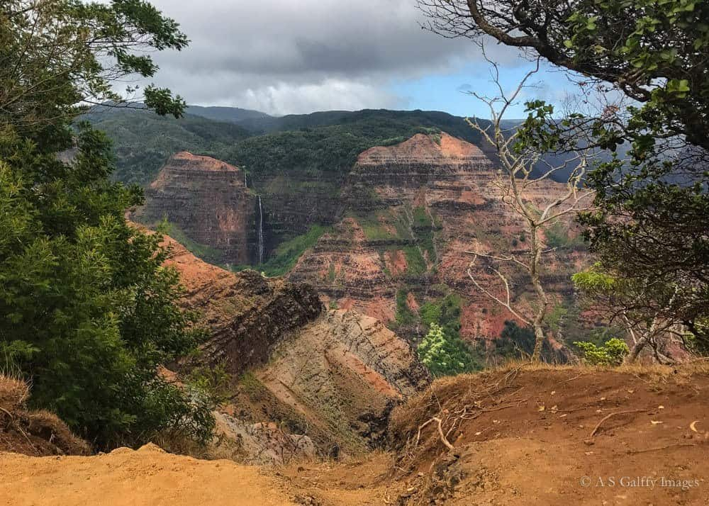 View of the Waimea Canyon lookout