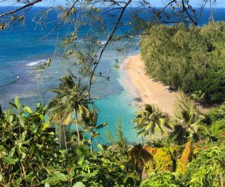 Kauai Vs Maui – Which Hawaiian Island is a Good Fit for You?
