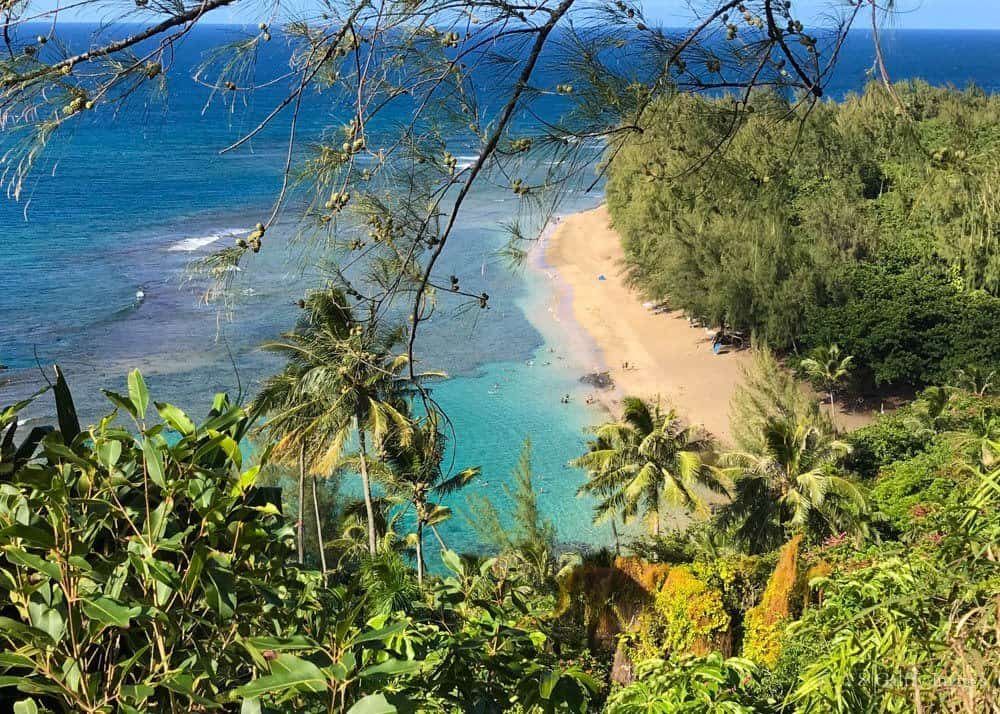 Why Visit Kauai? 7 Compelling Reasons to Help You Decide