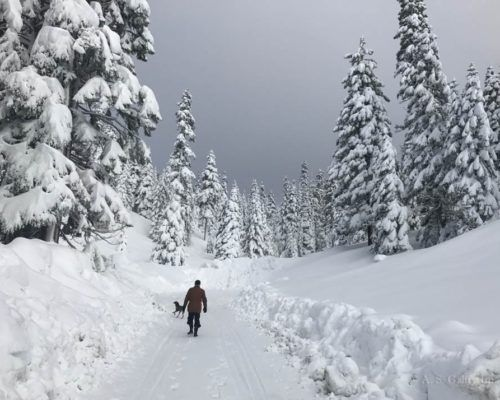 Fun Things to Do in Lake Tahoe in Winter Besides Skiing