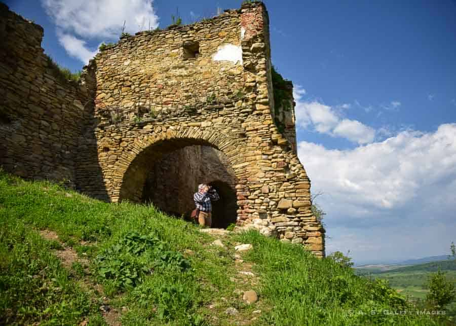 ruins of the fortress of Saschiz